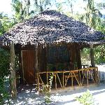 Bush Baby Bungalow