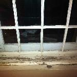  One example of serious disrepair evident throughout property