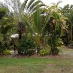 Foto van BIG4 Port Douglas Glengarry Holiday Park