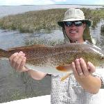 Swamp Stallion Fishing Adventures