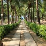 pathway to the private beach