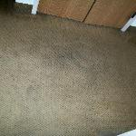 Filthy carpeting in our room 107