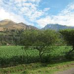  Urubamba