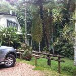 Crater Lakes Rainforest Cottages resmi