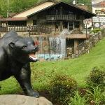 Photo of Brookside Resort Gatlinburg