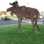 Metallic Moose outside MacKenzie River Pizza Restaurant.
