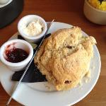 Worlds Biggest Scone@ Glencoe Cafe