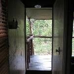 view through shower into the bush