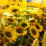 Hotel with sunflower theme