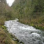 ‪Salmon River Trail‬