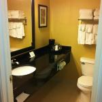 Φωτογραφία: Saginaw Comfort Suites