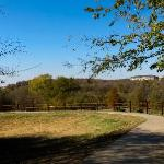 Arbor Hills Nature Preserve trails