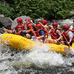 The Upper Pigeon is a family friendly river trip with class II-IV rapids.