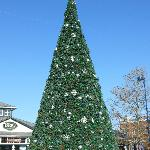 Christmas Tree lighting at Easton Town Center