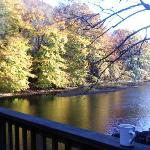  Morning view from the back porch, next to hot tub