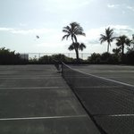 Island Tennis