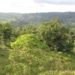 View from a hilltop at Lost Iquana