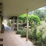 Foto de Sovereign Hill Country Lodge