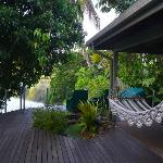 Foto de Daintree Village Bed and Breakfast