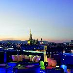 Foto de The Ritz-Carlton, Vienna