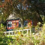 Copper Beech House B&B