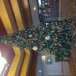  Dayton Marriott Christmas Tree in the lobby