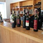 Paphos Wine Tours Day Tours