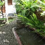 Dana Guesthouse Bali