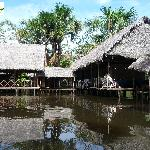 Our Amazon Lodge