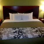 Φωτογραφία: Sleep Inn and Suites Dothan