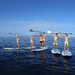 C'mon... Get your Paddle On! Maui