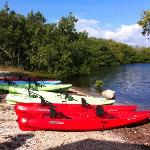  our kayaks rented at Florida Bay Outfitters