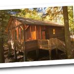 Opossum Creek Retreat Cabin Rentalsの写真