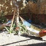 Photo de Hostel Nasca Trails
