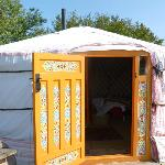 Woodpecker Yurt