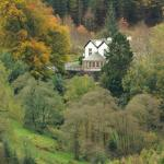 The Cottage in the Wood Foto