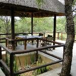 Raptor's Lodge Hoedspruitの写真