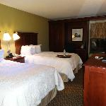 Hampton Inn Detroit Northville照片