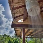 Belize Tree Houses照片
