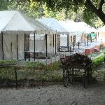 Series of Tents
