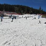  Beginners Skii Area