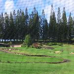 View from Room at the Kapalua resort