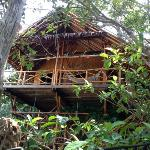  tree house 3