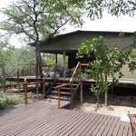 Φωτογραφία: Ngama Tented Safari Lodge