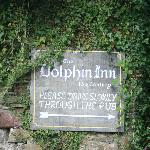  The Dolphin sign