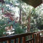 Photo of Tico Adventure Lodge