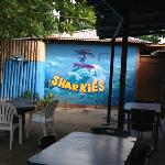  sharkies!