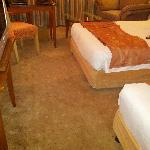  Carpet .......stained and old......needs changing