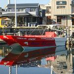 Southern Cape Ocean Experience