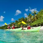Virgin Islands Ecotours